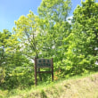 山散歩 嵐山 (5/27)