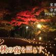 奈良県の『室生寺でライトアップ』 2018年11月