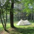避暑キャンプに行ってきました