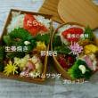 夏の生姜焼き弁当