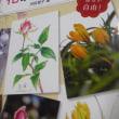 最近買った本2