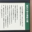 冬枯れの新沢千塚古墳公園(おうちCafeわんこ堂)