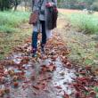 今年も黒沢(くろぞう)湿原祭りを楽しんで来ました。