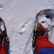 雪の明神平から明神岳へ スノーシューで快適に歩く やはり山用品は本物に限る 悪徳ミズノや低品質トレクスタではあかんわ
