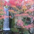 初めて行った梅小路公園 紅葉もそろそろ終わり頃でした。