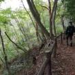 青葉山ハイキング その後はベーグルサンド