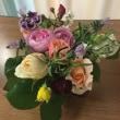 自宅のバラ達