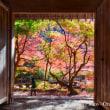 【11/25開催 農村風景&ランチ撮影スキルアップ講座 (知新 作例写真)】