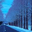 湖北雪化粧(1)