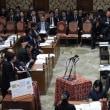 アベノミクスは日本を貧しくしている。予算委員会で質問。
