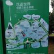 蘇州 雨の荷塘月色湿地公園