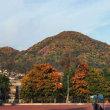 【自然も冬にまっしぐら。秋深まる札幌散歩路】