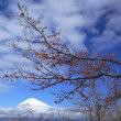 富士山 天気予報期待大 ⇒ 遠出から近場へのチャレンジ (^0_0^)