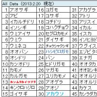 鳥撮りデータ56(2013.3ー2)