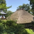 沼津と飯山の白隠熱