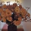 20170819の花