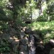 森川海のつながりを感じるプログラム