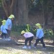 園外保育(3~5歳児)