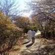 弟、淳の三回忌で帰郷 … 臼杵の竹宵、鶴見岳の展望