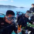今日も穏やかな石垣島です(^^)