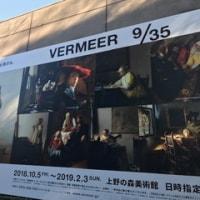 フェルメール展と両生類
