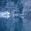 氷が溶けてふんわり雪が・・・