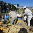 日本一遅い?「稲脱穀&籾摺り」