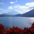 紅葉と富士山~本栖湖②終