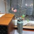 ぼけの花 のっぽの青磁の花器に生けました。