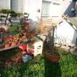 YAZAWA☆フラワー農園