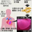 日記(5.20)体操教室 コラム「試金石」