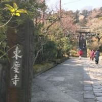 再び東慶寺へ
