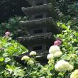 鎌倉 ショートトリップ 長谷寺