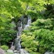 仙石庭園に行ってきました。。。