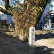 ~1556年  生駒吉乃