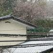 2219. なごり雪
