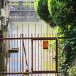 京都・高瀬川を歩く