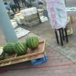 中国遼寧省 葫芦島市内での早朝散歩 朝市 7
