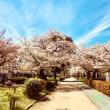 桜とおおさか東線
