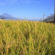 富士山 伊豆からの朝ドラ追い...  やっとの事でなんとか「姿 形が... 」 ( ^)o(^ )