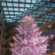 やっぱり10年&東京駅前広場