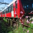 静岡鉄道はA3002 とコスモス (2018年秋 音羽町-日吉町)