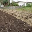 堆肥の漉き込み前