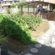 12号台風