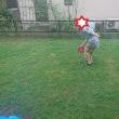 夏休み最終日も雨