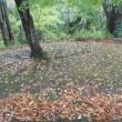 「秋の金沢 志の輔独演会」②