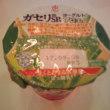 RSP58 お台場 サンプル百貨店 雪印メグミルクの恵 megumi ガセリ菌SP株ヨーグルト