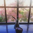 秋の湯布院☆