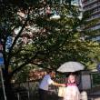 猛暑の東京五輪ー時期の再検討を!