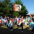 松浦よさこい祭り「えん」 2017